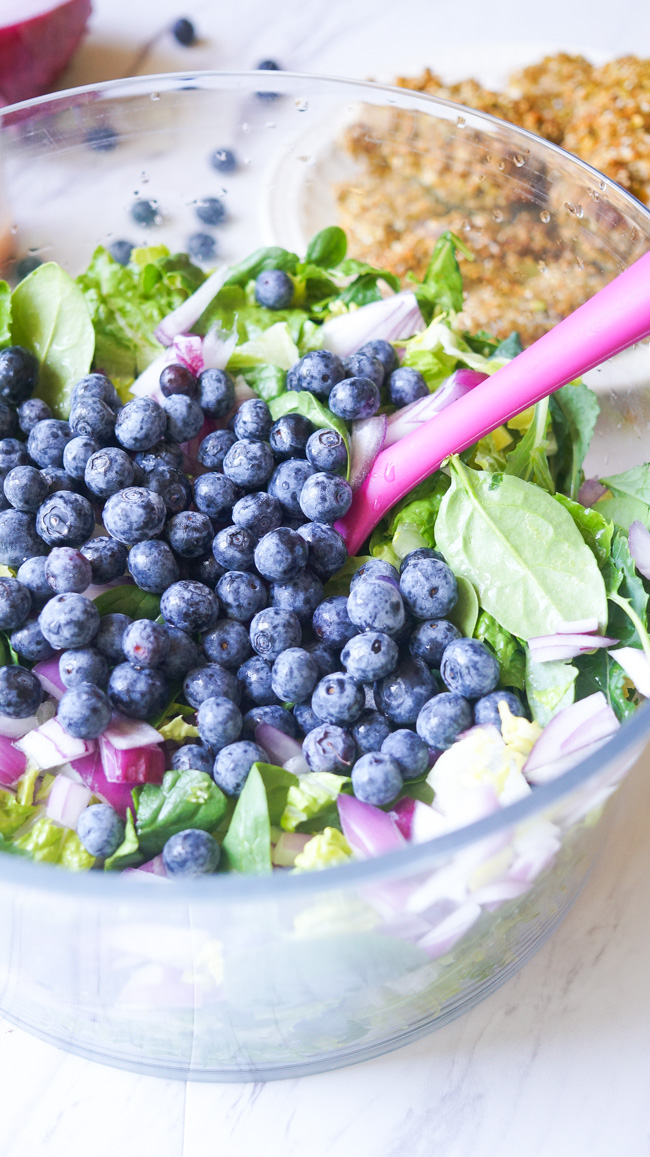 This Pistachio Crusted Chicken Salad is full of flavor! Packed with nuts, blueberries, and healthy greens, you won't want to stop eating!