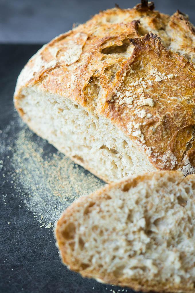 Learning The Art Of Sourdough Bread Kitschen Cat